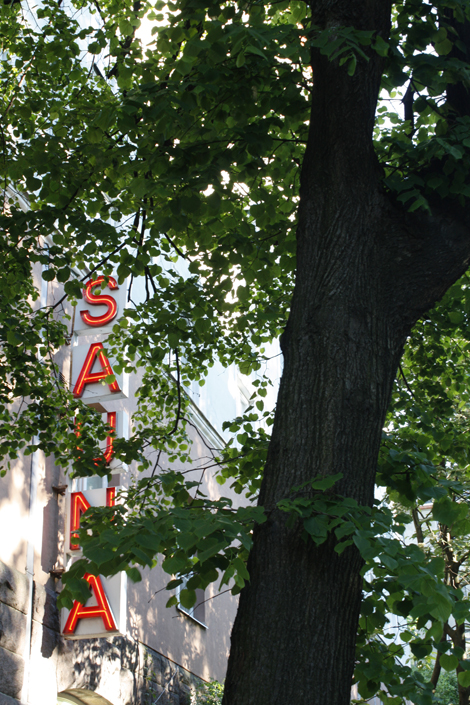 edaha-sauna_10.jpg